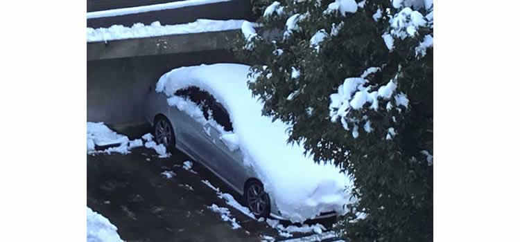 自由が丘・我が愛車も雪に