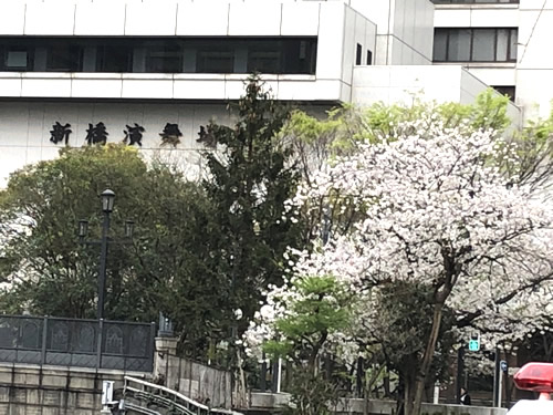 新橋演舞場『春のおどり』観劇-1|世田谷・自由が丘 天使バレエスクール